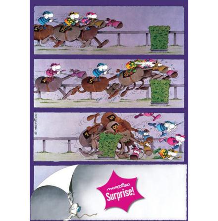Horses 1000 pieces Surprise
