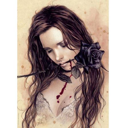 Favole: Dark Rose (1000 pieces)