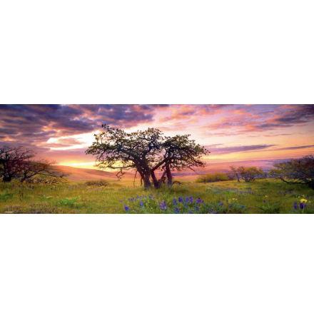 AvH: Oak Tree (2000 pieces panorama)