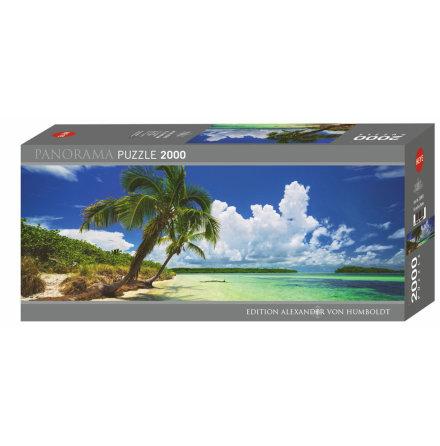 AvH: Paradise Palms (2000 pieces panorama)